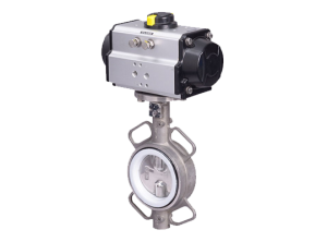 Butterfly Valves, High-Performance Butterfly Valves, Plastic Lined Butterfly Valves, Resilient Seated Butterfly Valves